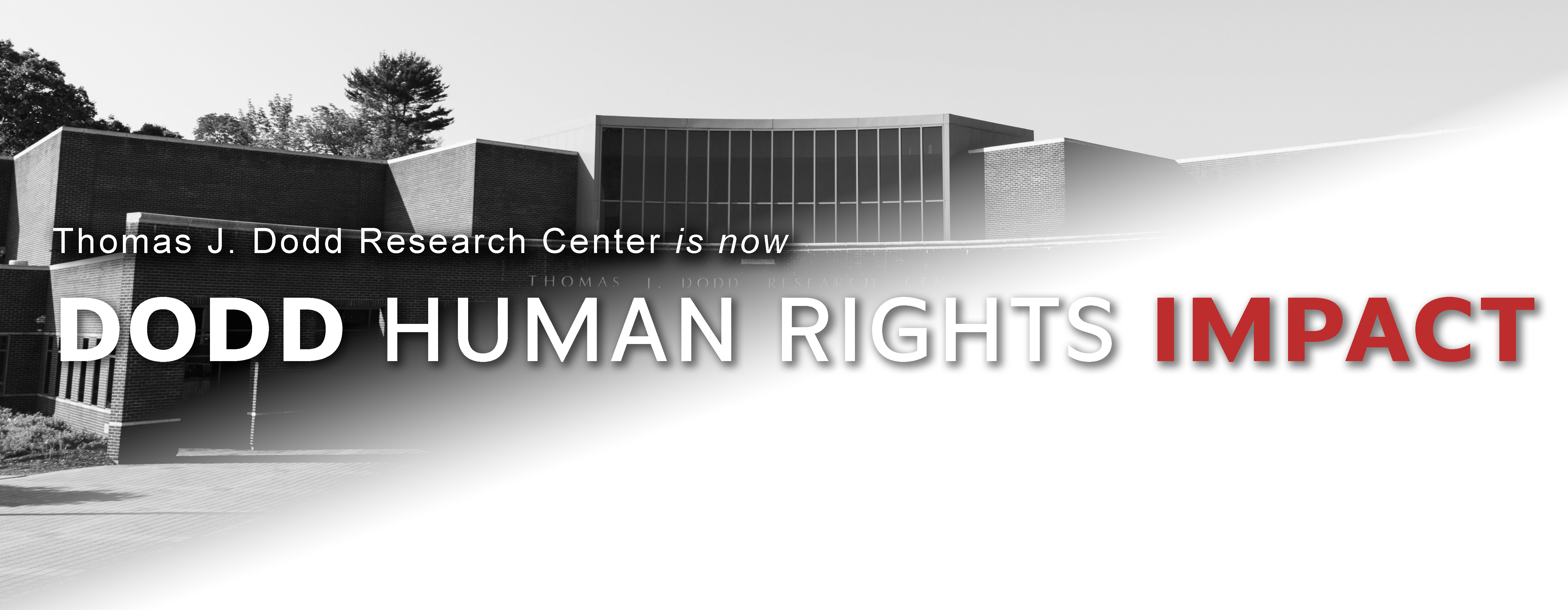 The Dodd Center is now Dodd Human Rights Impact Image